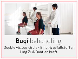 Systemene-Buqi