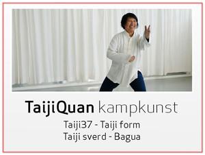 Taiji37